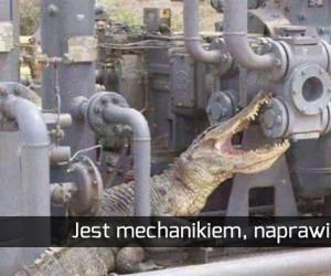 Specjalista inżynier