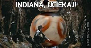 Indiana, uciekaj!