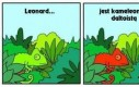 Najgorsza przypadłość dla kameleona