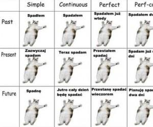 Gramatyka angielska w jednym obrazku