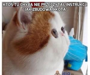 """Ktoś tu chyba nie przeczytał instrukcji """"Jak zbudować kota"""""""