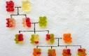 Drzewko genealogiczne