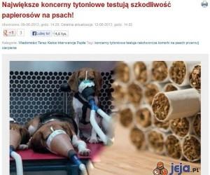 Największe koncerny tytoniowe testują szkodliwość papierosów na psach!