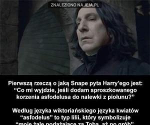 Pierwsze zdanie Snape'a do Harrego