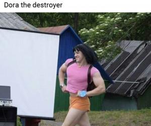 Dora Niszczyciel