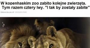 To na pewno jest Zoo?