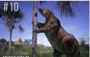 Top 10 największych organizmów żywych ever
