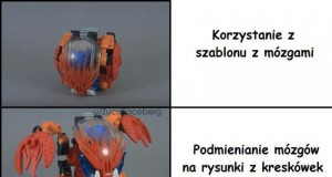 Mem idealny