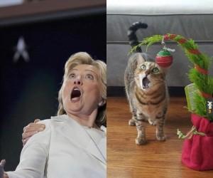 Całkiem spore podobieństwo