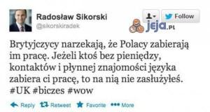 Polacy zabierają pracę Brytyjczykom