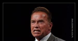 W Austrii, z której pochodzi Schwarzenegger
