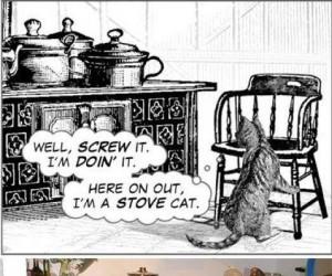 Kot i gorące garnki