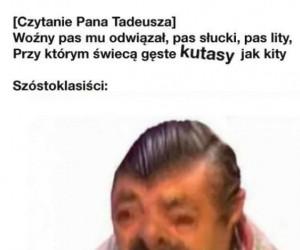 Pan Tadeusz jest piękny