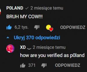 Zweryfikowana Polska