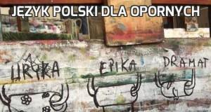 Język polski dla opornych