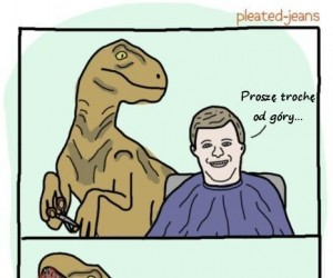 U fryzjera...