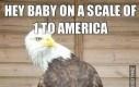 W skali od jeden do Ameryki jak wolna jesteś dzisiaj wieczorem?