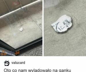 Memy z nieba