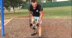 Dzień z małym kangurkiem