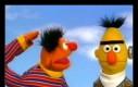 Bert w końcu zrozumiał
