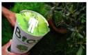 Ekologiczna urna - stań się drzewem
