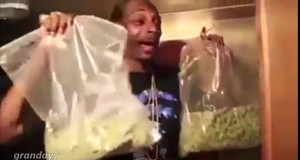 Snoop w swoim żywiole