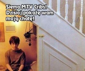 MTV Cribs na chacie u Harry'ego