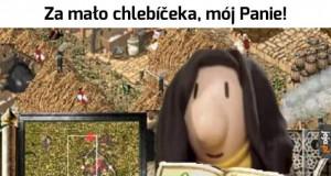 Czeski problem
