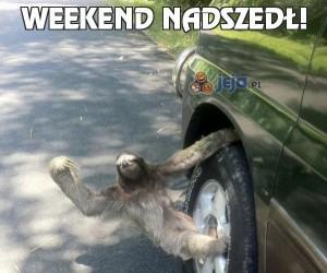 Weekend nadszedł!