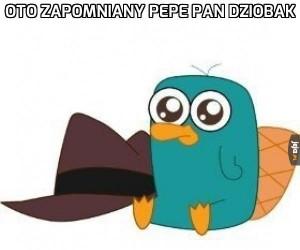 Zapomniany Pepe pan dziobak