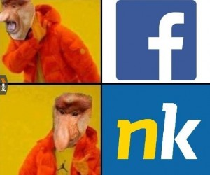 Janusz w social mediach