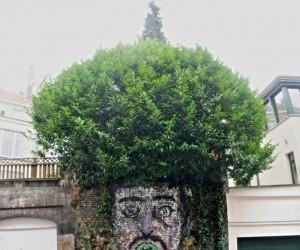Ekologiczna fryzura