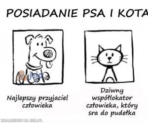 Posiadanie psa i kota