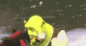 Kochaj mnie, Shrek!
