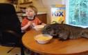 Wspólne śniadanko