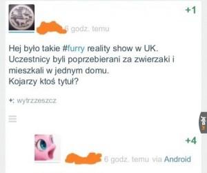 Furry Show