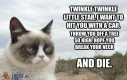 Rymowanka Grumpy Cata