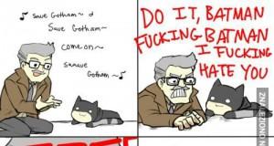 Gdyby batman zachowywał się jak kot