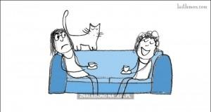 Jak być wzorowym kotem cz. 1
