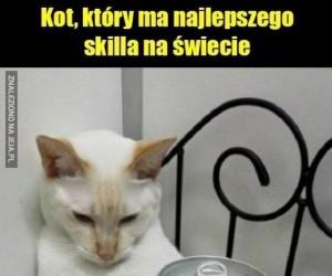 Niesamowity koteł