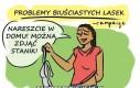 Problemy biuściastych lasek cz.14