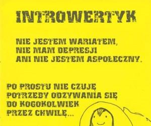 Introwertyzm to nie choroba, to styl życia