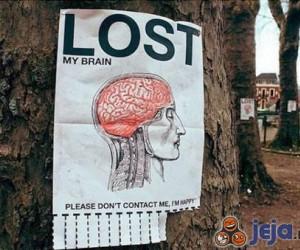 Zaginął mój mózg