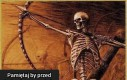 Kto by chciał być zwykłym szkieletem, kiedy można dźgać ludzi na odległość