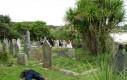 Martwi ludzie na cmentarzu