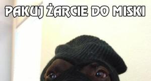 Pies-bandyta robi skok życia