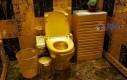 Złoty kibelek