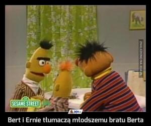 Bert i Ernie tłumaczą młodszemu bratu Berta