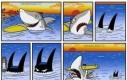 Koszmar każdego rekina