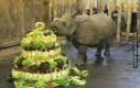 Urodzinowy tort wegetariański